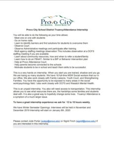 Provo School District Internship
